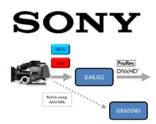 SONY CineAlta® F5, F55 & F65 RAW – SRFile – 4KXAVC/HDXAVC – İş Akış Şeması